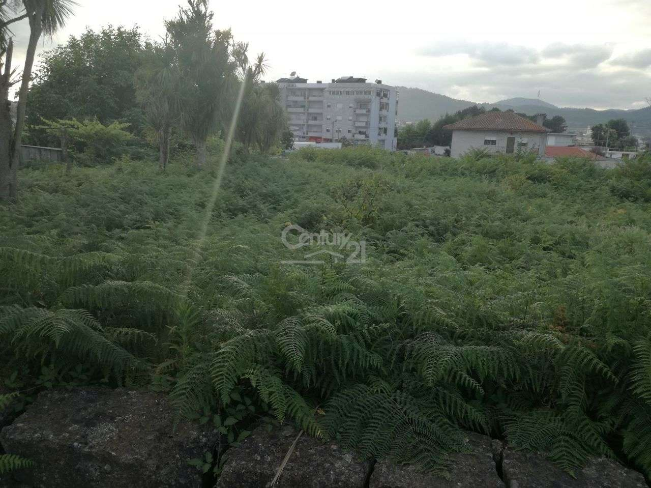 Terreno para comprar, Barcelinhos, Braga - Foto 8