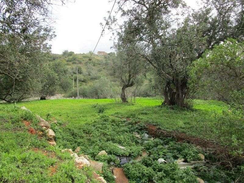 Quintas e herdades para comprar, Estômbar e Parchal, Faro - Foto 5