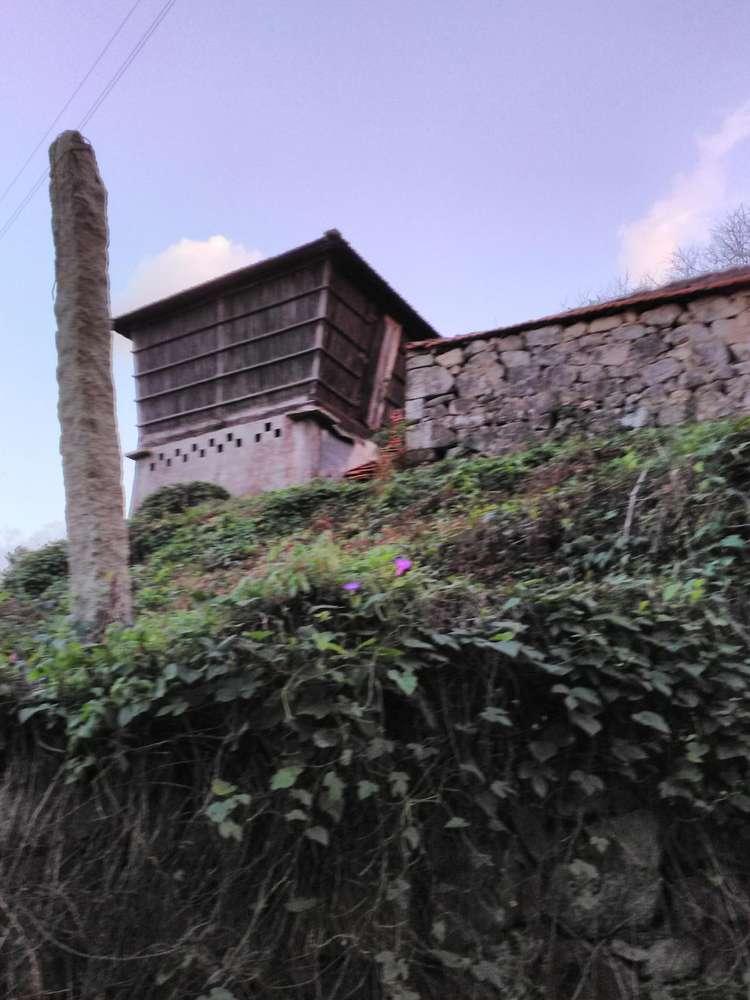 Quintas e herdades para comprar, Oliveira do Douro, Vila Nova de Gaia, Porto - Foto 6
