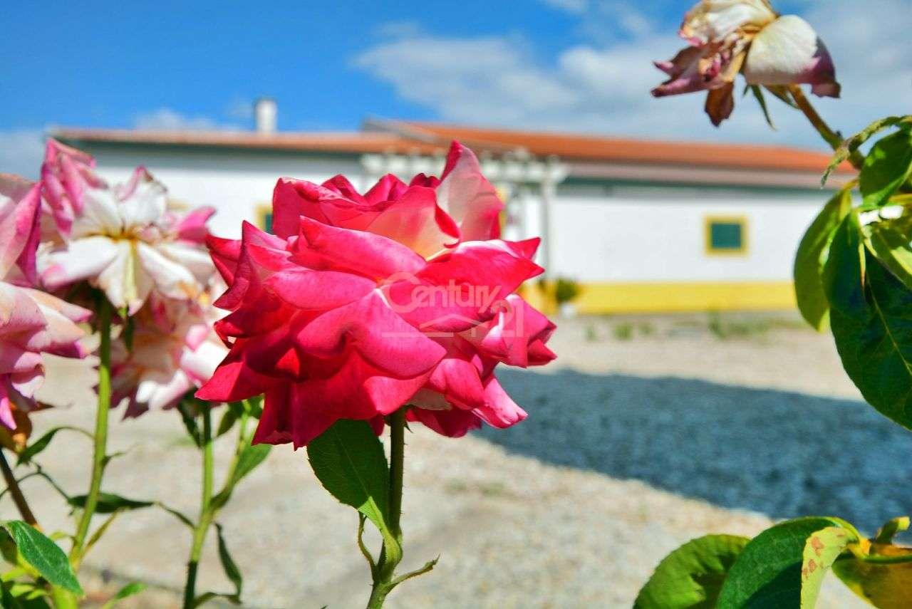 Quintas e herdades para comprar, Branca, Coruche, Santarém - Foto 17