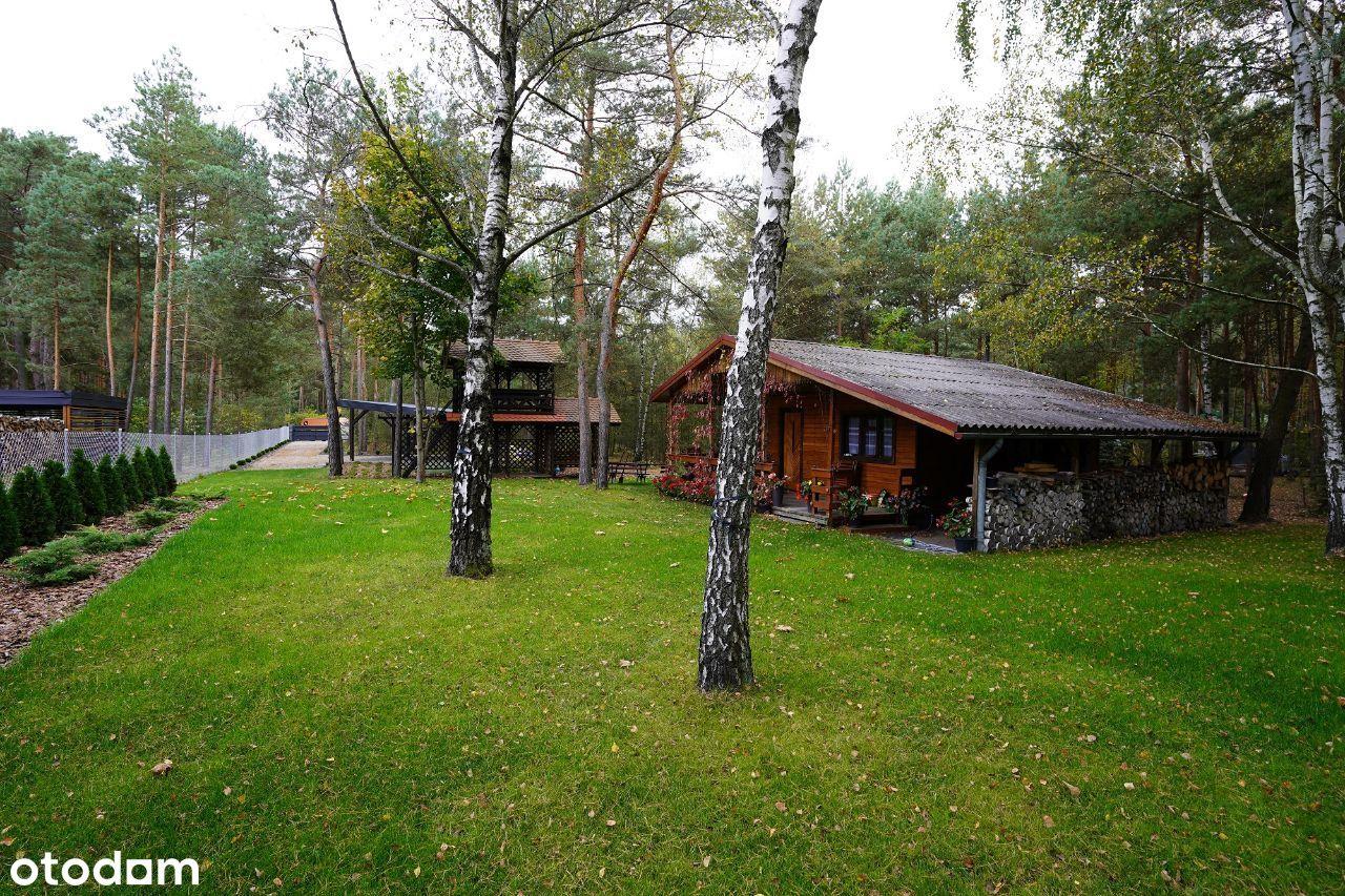Działka z domkiem zagospodarowana budowlano leśna