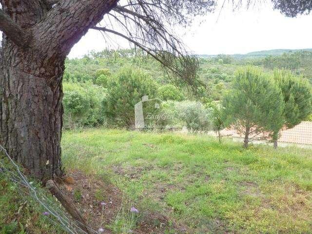 Quintas e herdades para comprar, Martinchel, Abrantes, Santarém - Foto 29
