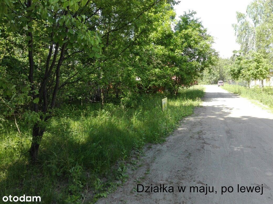 Unikatowa działka, 100m od Puszczy Kampinoskiej