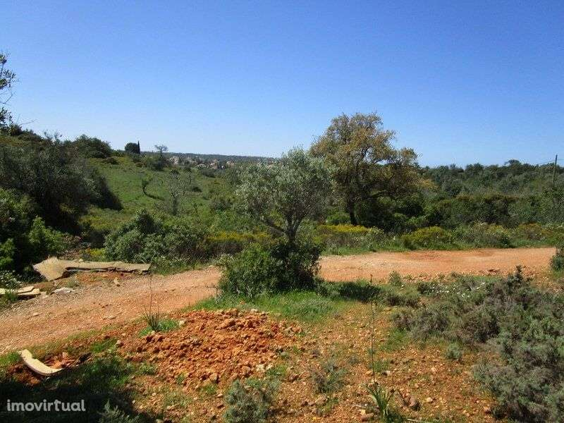 Quintas e herdades para comprar, Estômbar e Parchal, Faro - Foto 12