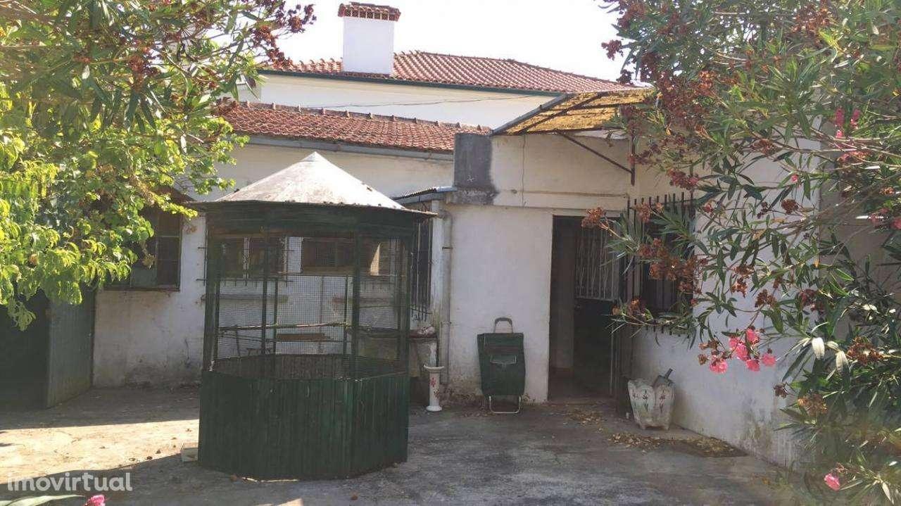 Moradia para comprar, Tomar (São João Baptista) e Santa Maria dos Olivais, Tomar, Santarém - Foto 11