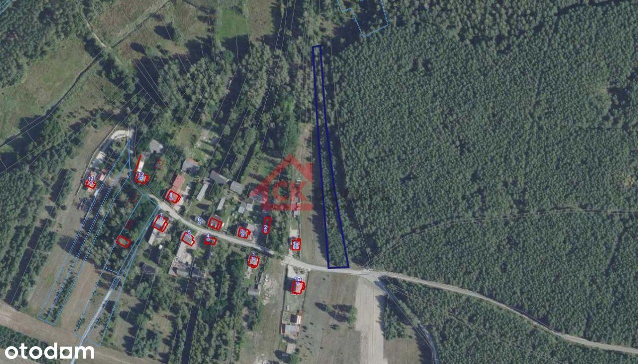 Działka, 3600m2, Lesica, gm. Piekoszów