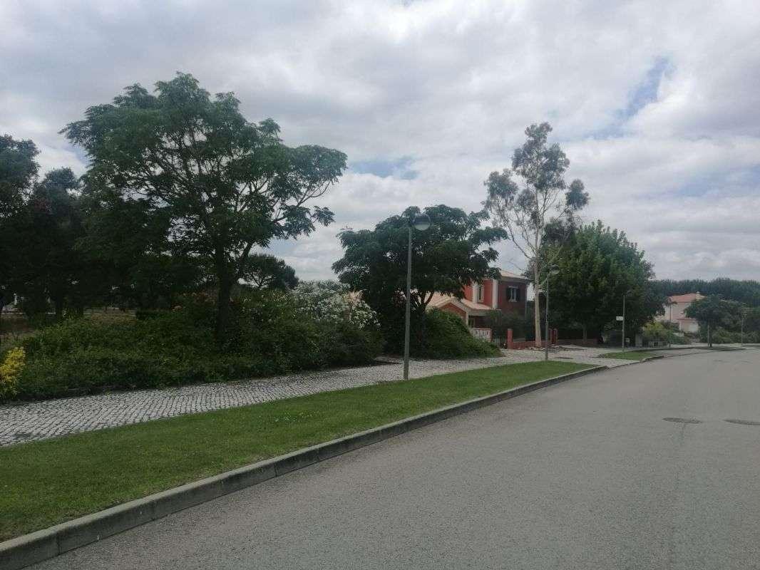 Terreno para comprar, Santo Estevão, Benavente, Santarém - Foto 5