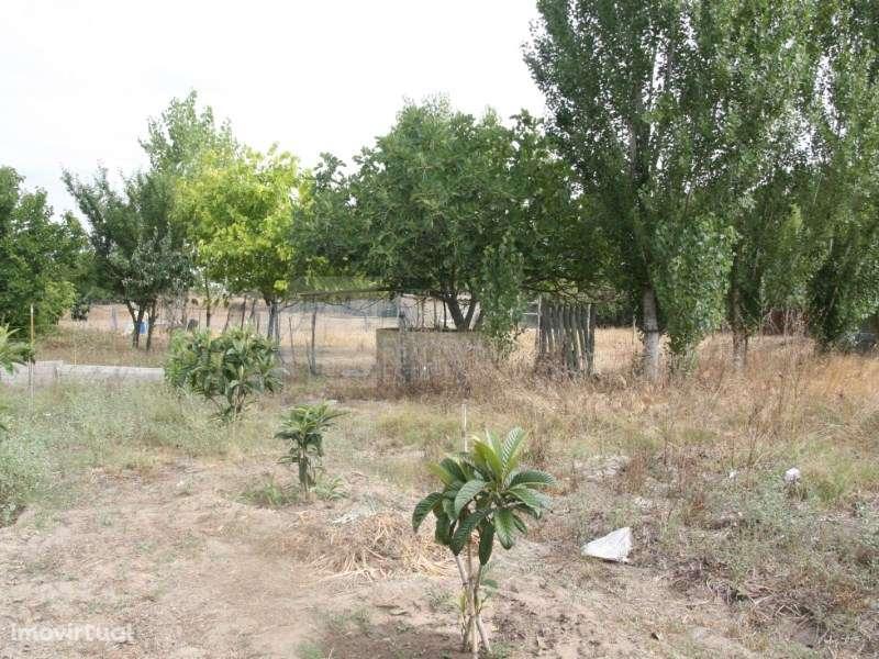 Terreno para comprar, Pinhal Novo, Setúbal - Foto 33