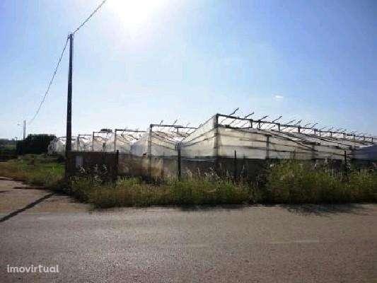 Terreno para comprar, Silves, Faro - Foto 7