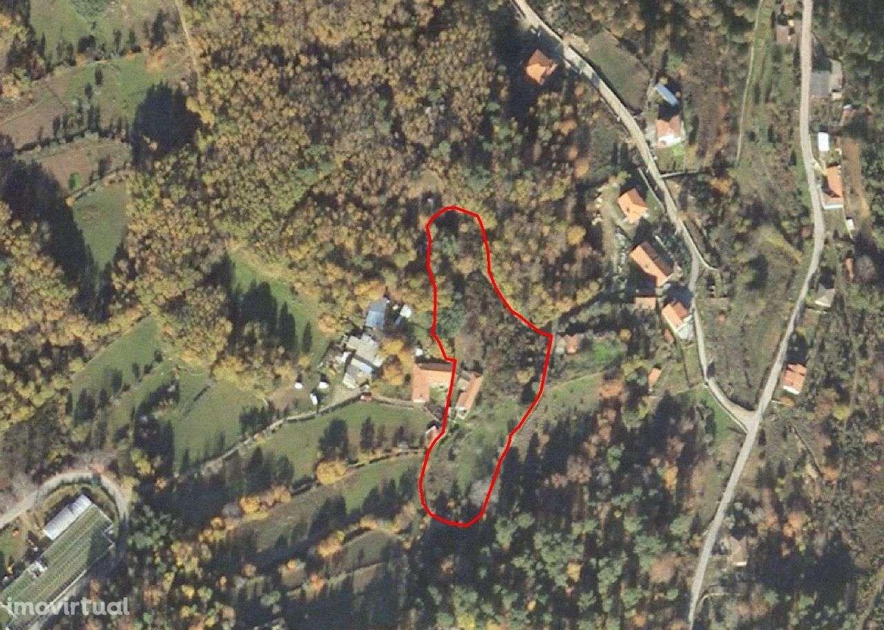 Quintas e herdades para comprar, Bornes de Aguiar, Vila Real - Foto 13