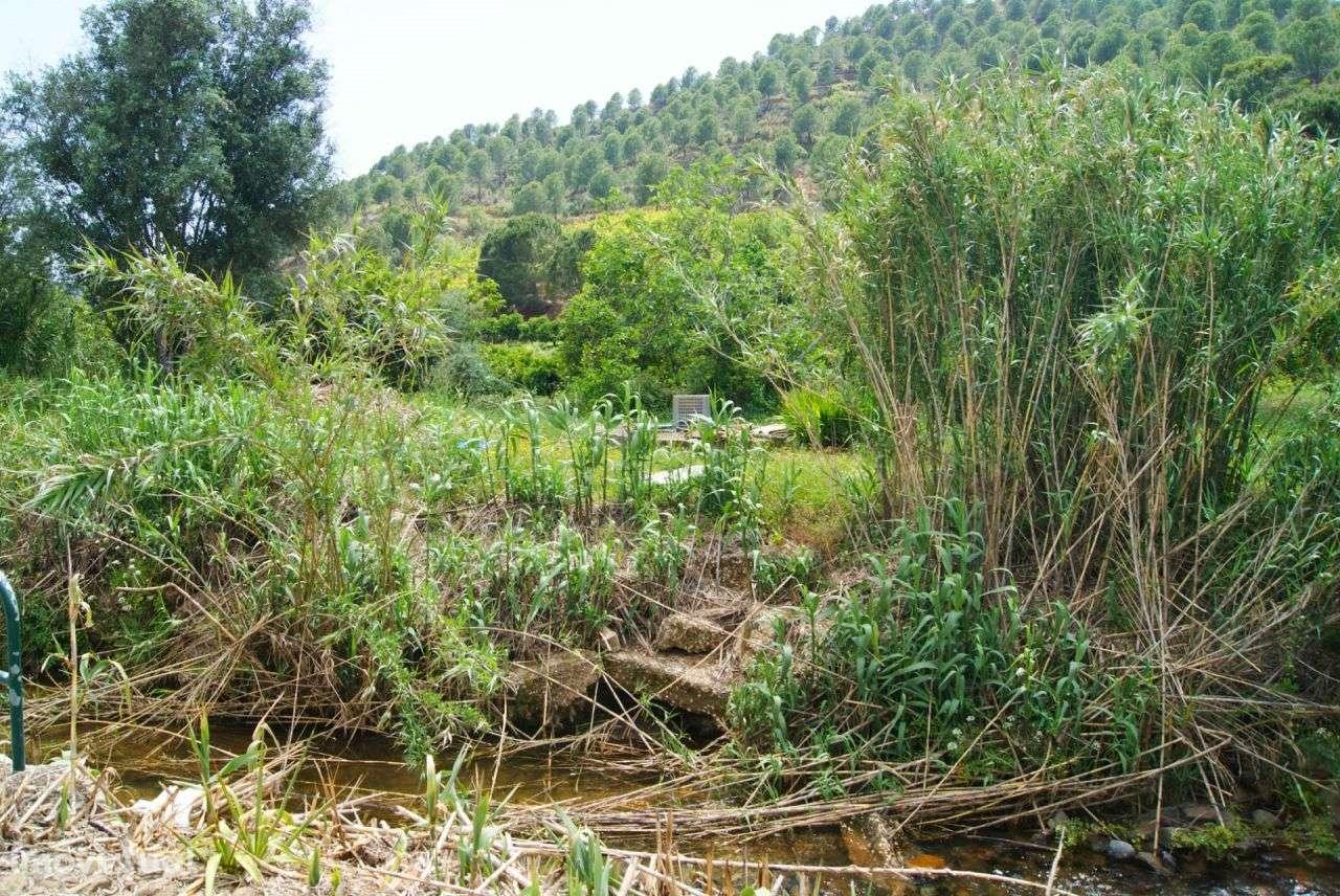 Terreno para comprar, Alferce, Monchique, Faro - Foto 27
