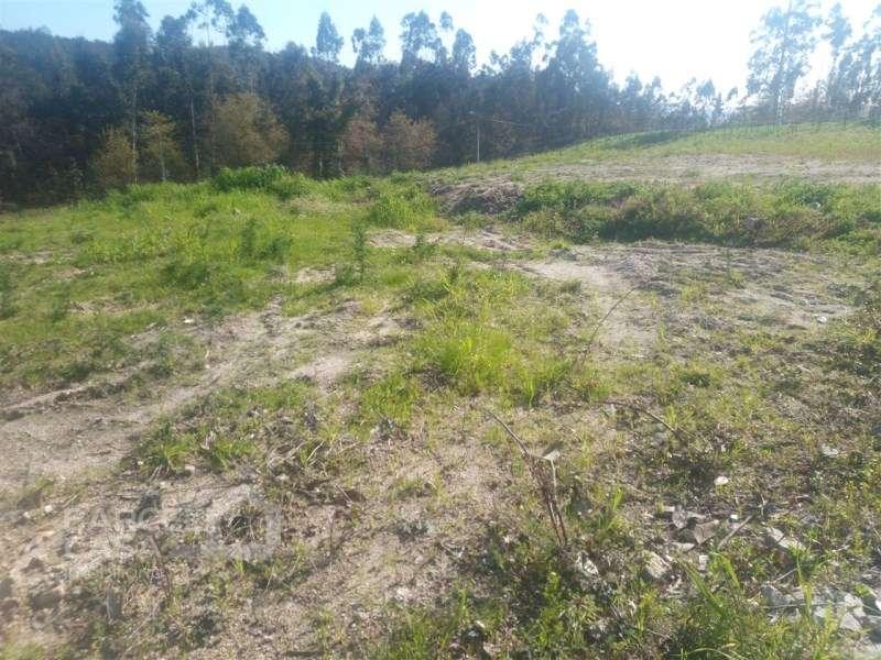 Terreno para comprar, Lemenhe, Mouquim e Jesufrei, Braga - Foto 5