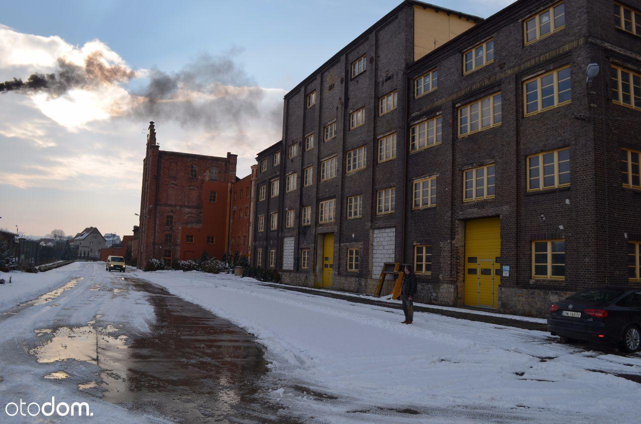 ZIĘBICE: hale produkcyjne i biurowiec - 18000 m kw