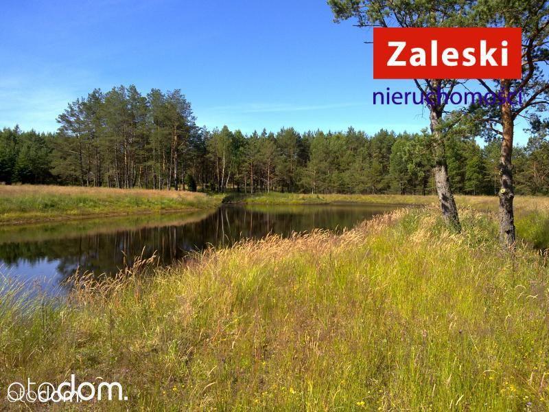 Działka siedliskowa - Prądzonka