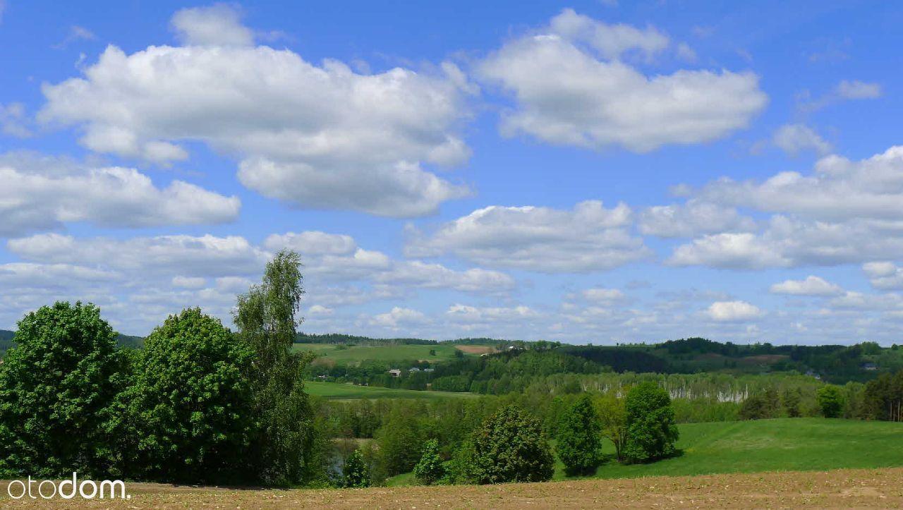 Jeleniewo - działki koło lasu i parku krajobraz.