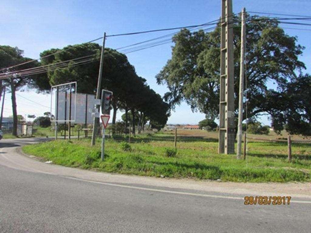 Terreno para comprar, Pinhal Novo, Setúbal - Foto 14