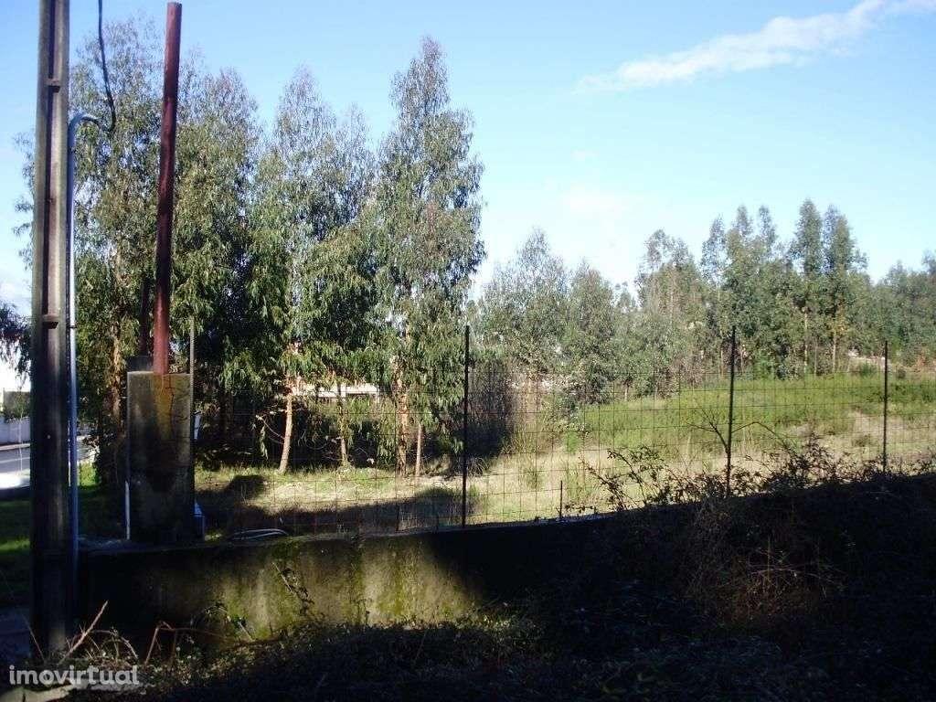 Terreno para comprar, Espinho, Braga - Foto 3