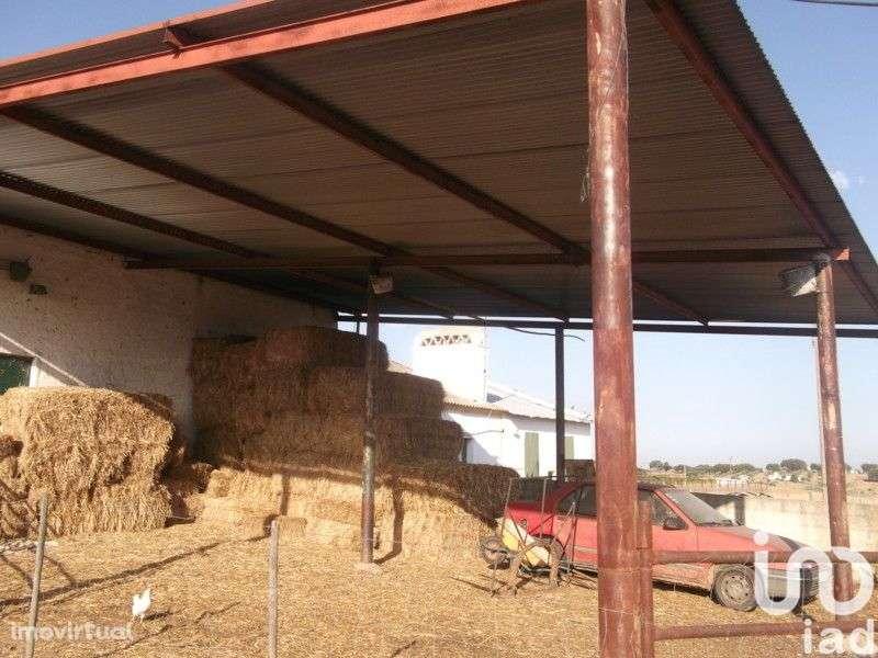 Terreno para comprar, Fronteira - Foto 4