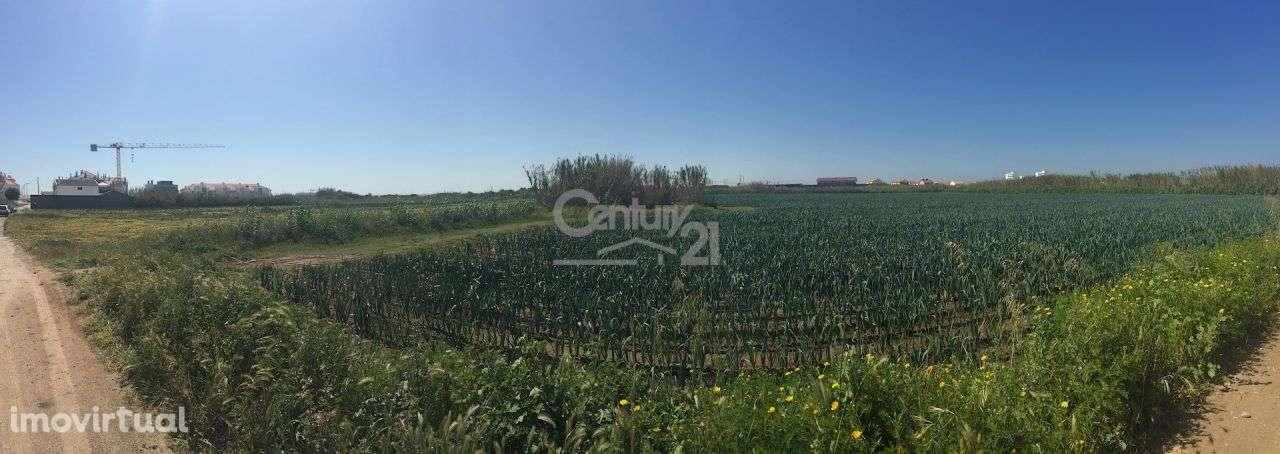 Terreno para comprar, Ferrel, Leiria - Foto 3