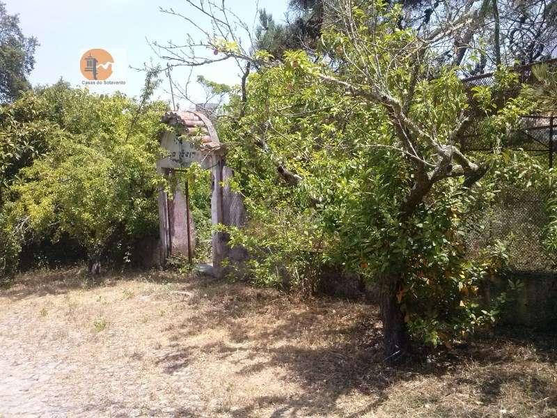 Quintas e herdades para comprar, Rua de Solmar - Quintinhas, Charneca de Caparica e Sobreda - Foto 44