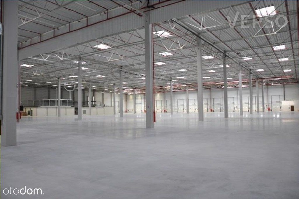 Magazyn/warehouse 2437 sqm. We speak english.