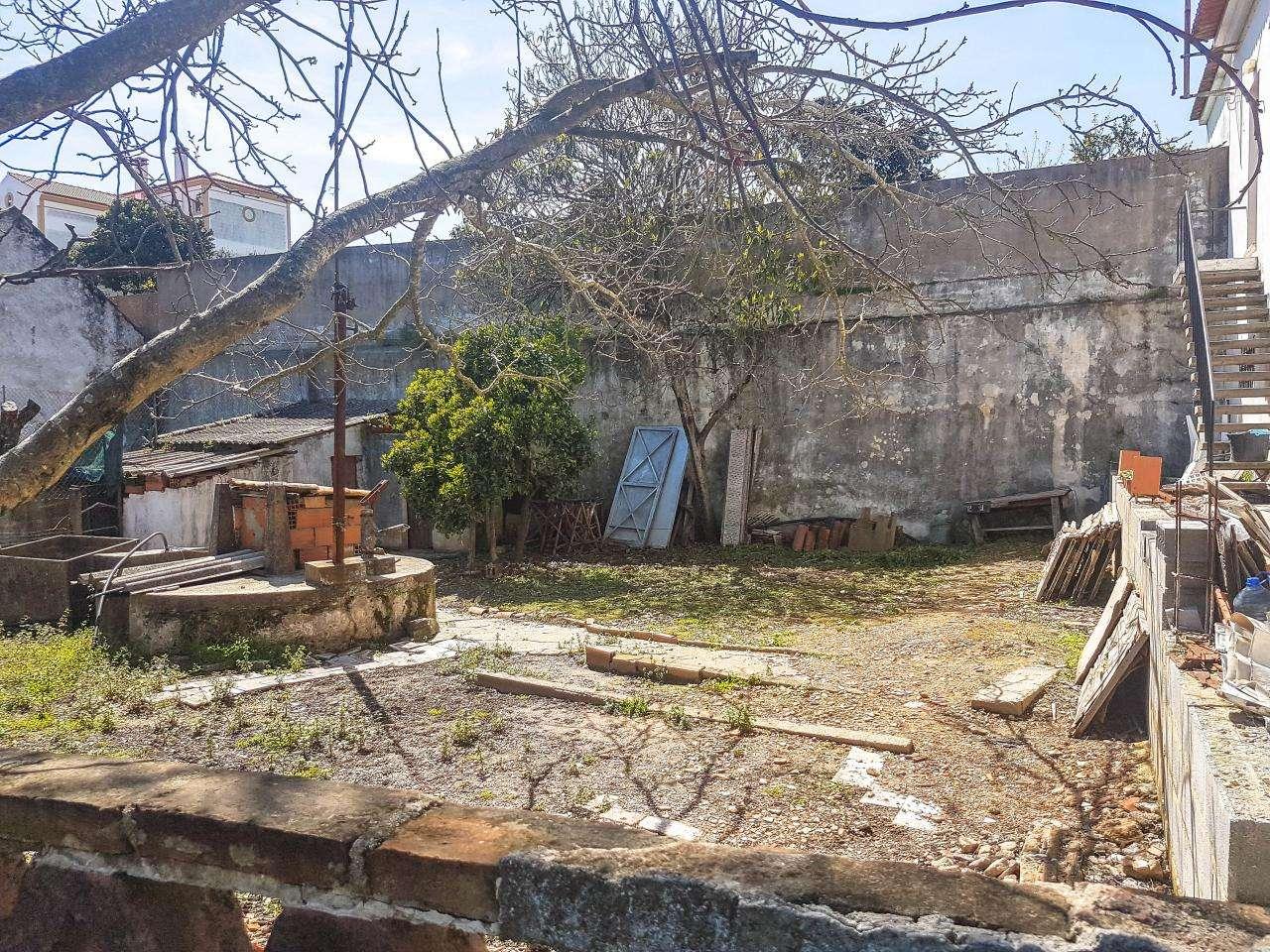 Terreno para comprar, Santiago do Cacém, Santa Cruz e São Bartolomeu da Serra, Setúbal - Foto 3