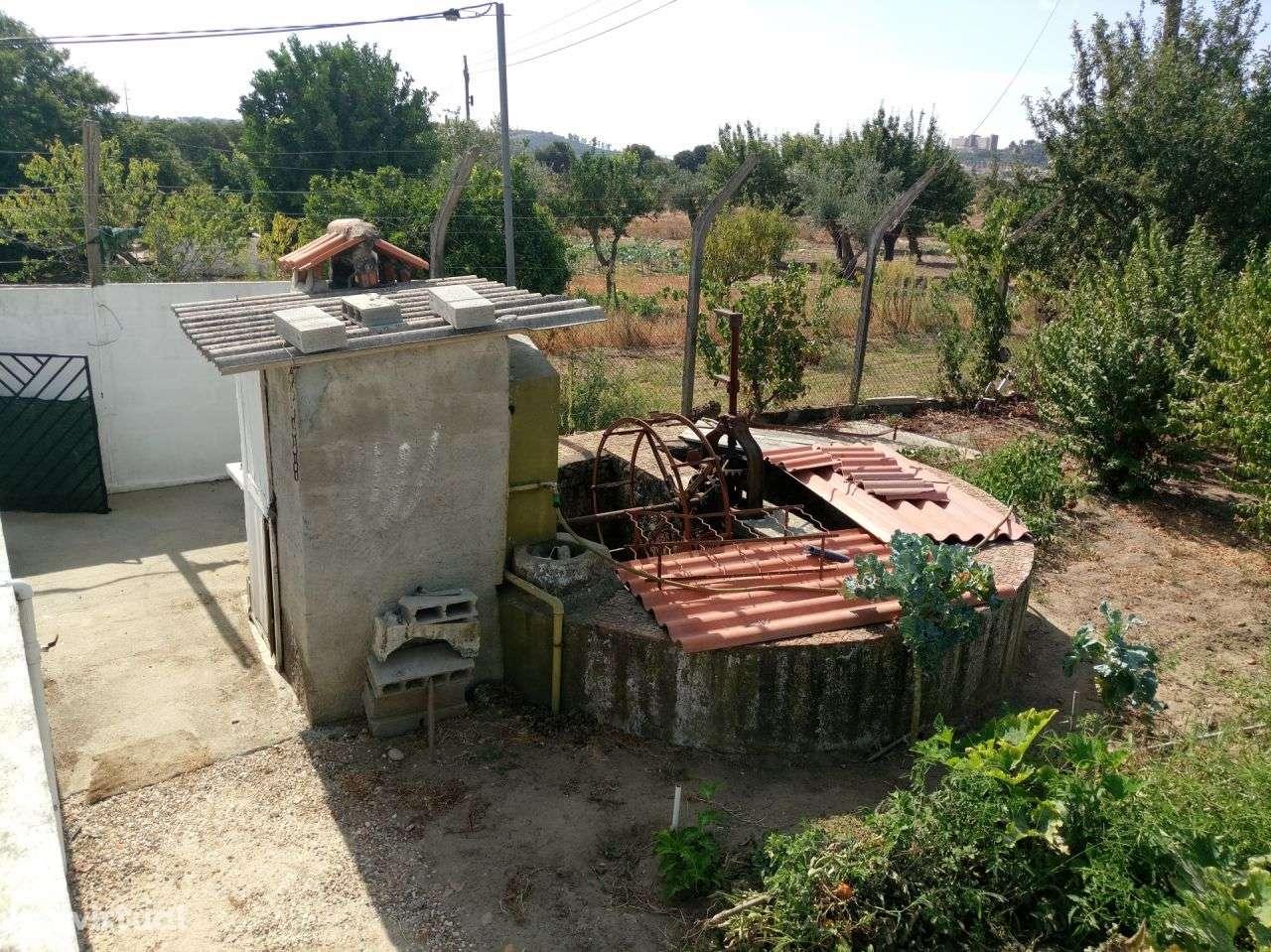 Terreno para comprar, Pego, Abrantes, Santarém - Foto 11