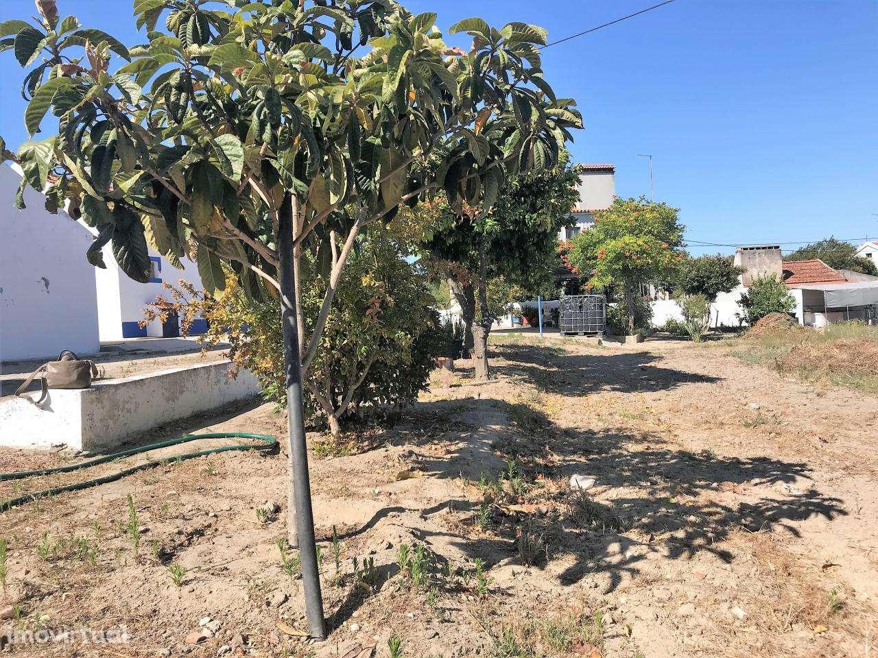 Quintas e herdades para comprar, Cortiçadas de Lavre e Lavre, Montemor-o-Novo, Évora - Foto 32
