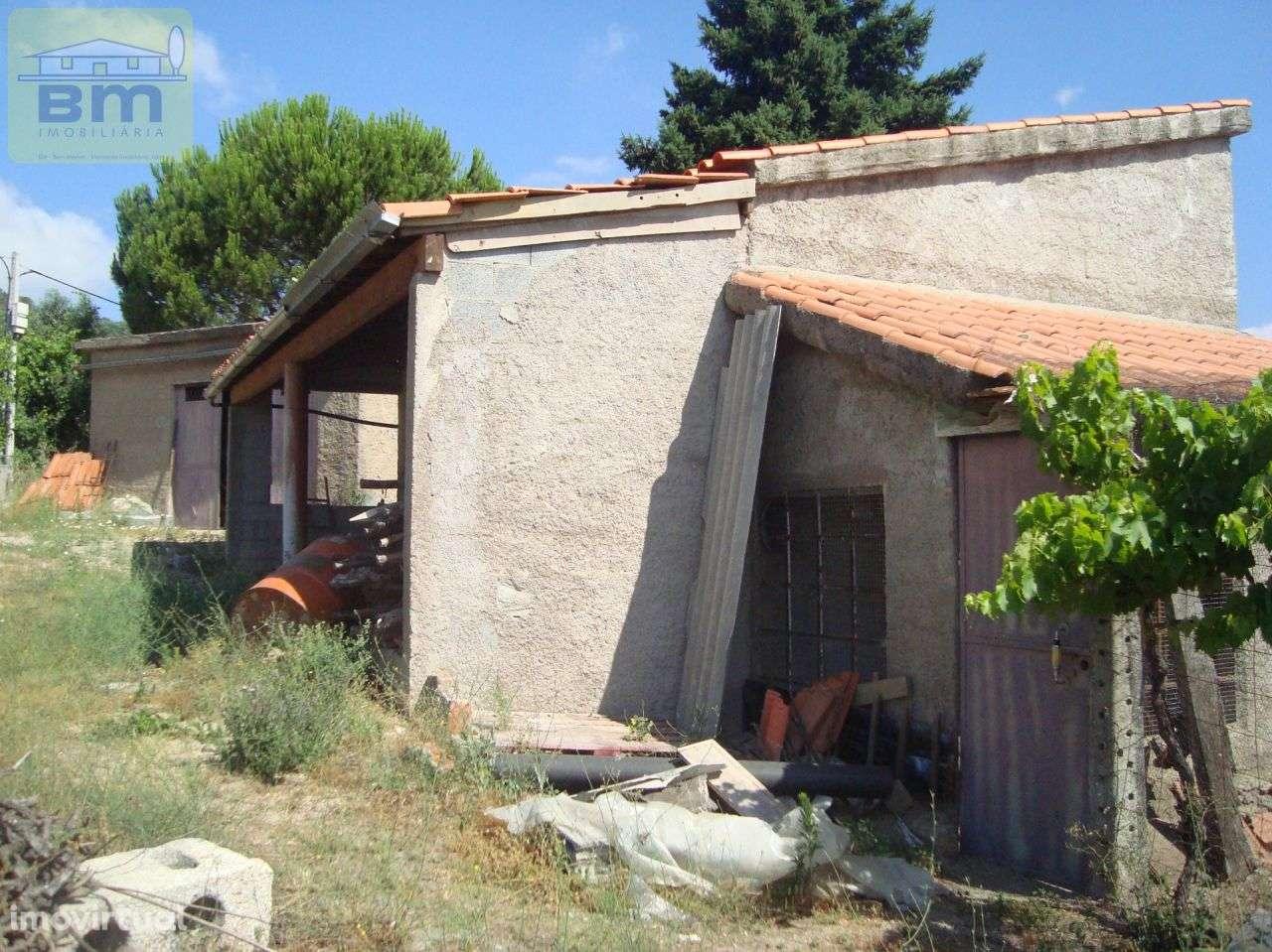 Quintas e herdades para comprar, Almaceda, Castelo Branco - Foto 13