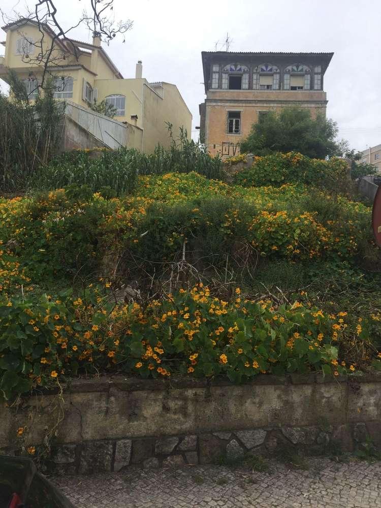 Terreno para comprar, Oeiras e São Julião da Barra, Paço de Arcos e Caxias, Lisboa - Foto 6
