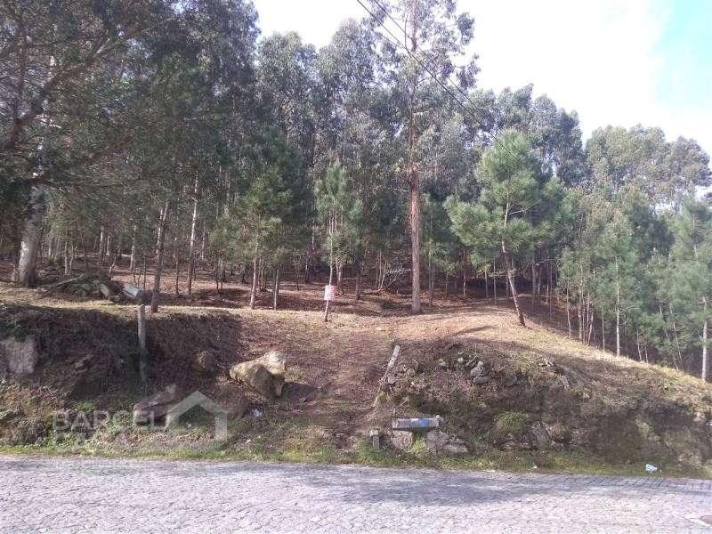 Terreno para comprar, Carvalhal, Braga - Foto 11