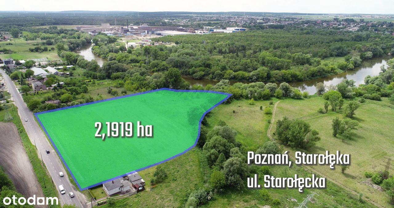 Działka z potencjałem, linia brzegowa Warty-Poznań