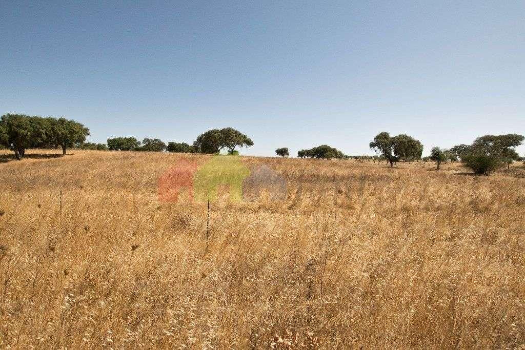 Terreno para comprar, Messejana, Aljustrel, Beja - Foto 2