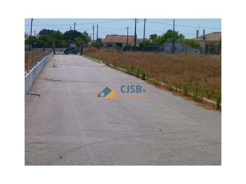 Terreno para comprar, Benavente, Santarém - Foto 5