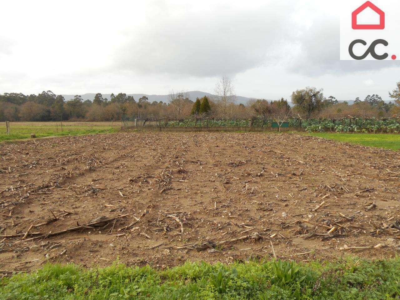 Terreno para comprar, Reboreda e Nogueira, Viana do Castelo - Foto 2
