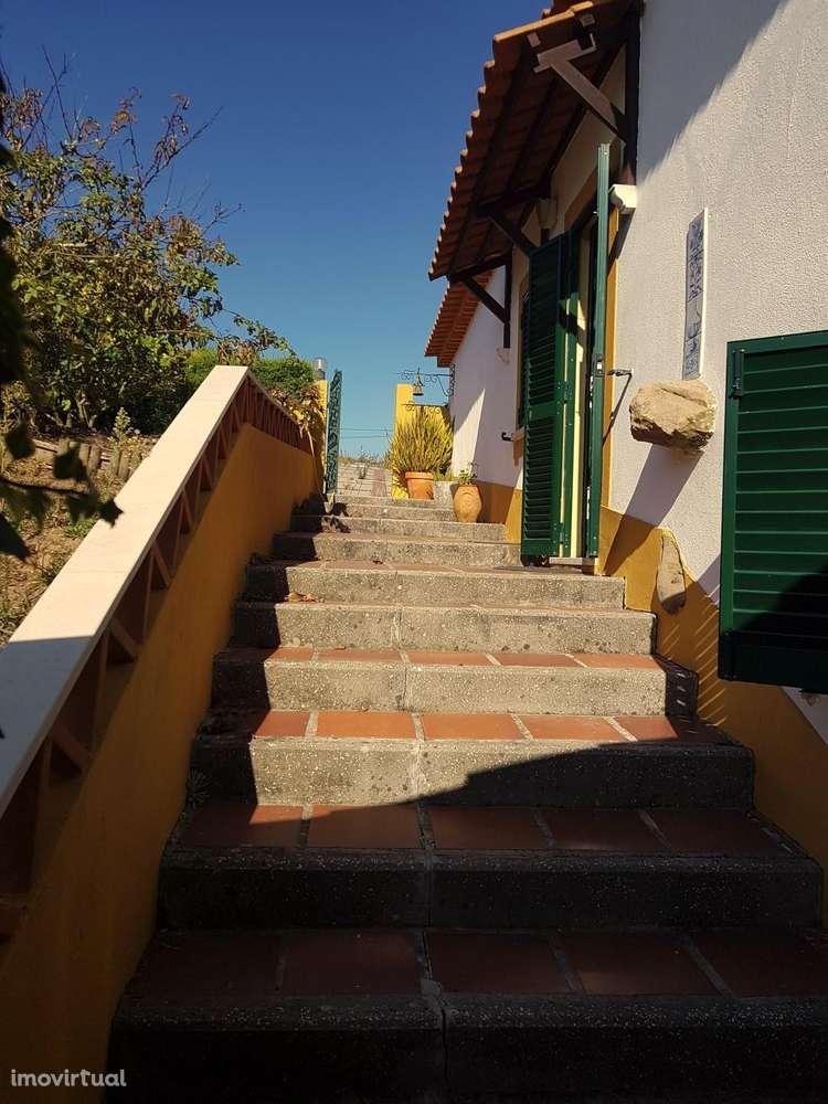Quintas e herdades para comprar, Carvalhal, Leiria - Foto 7