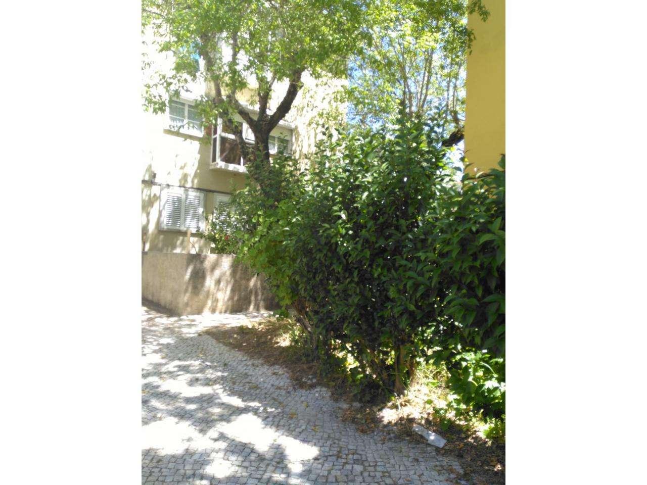 Apartamento para arrendar, Alvalade, Lisboa - Foto 31