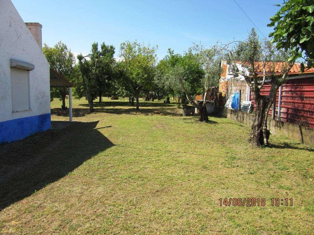 Quintas e herdades para comprar, Vendas Novas - Foto 12