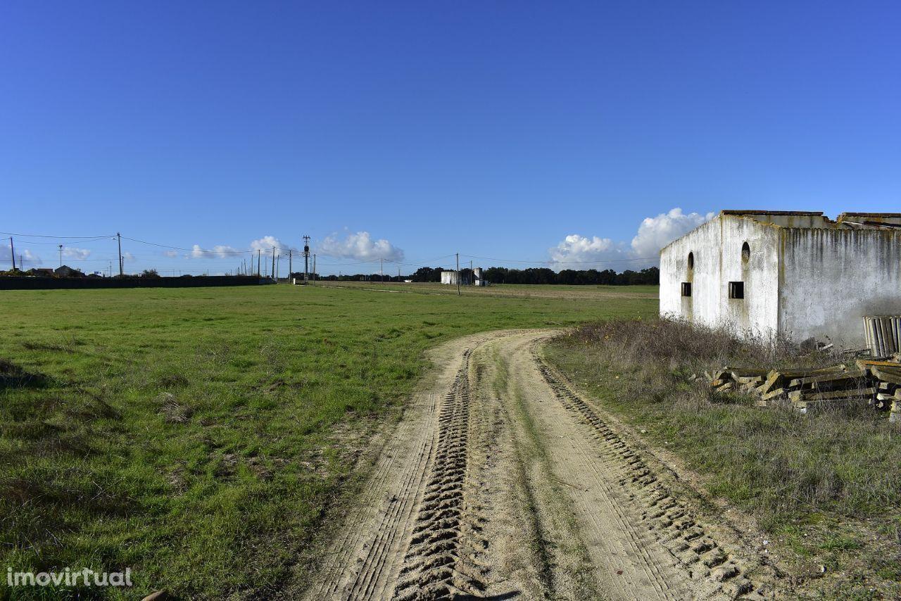 Terreno para comprar, Estrada Nacional 4, Atalaia e Alto Estanqueiro-Jardia - Foto 6