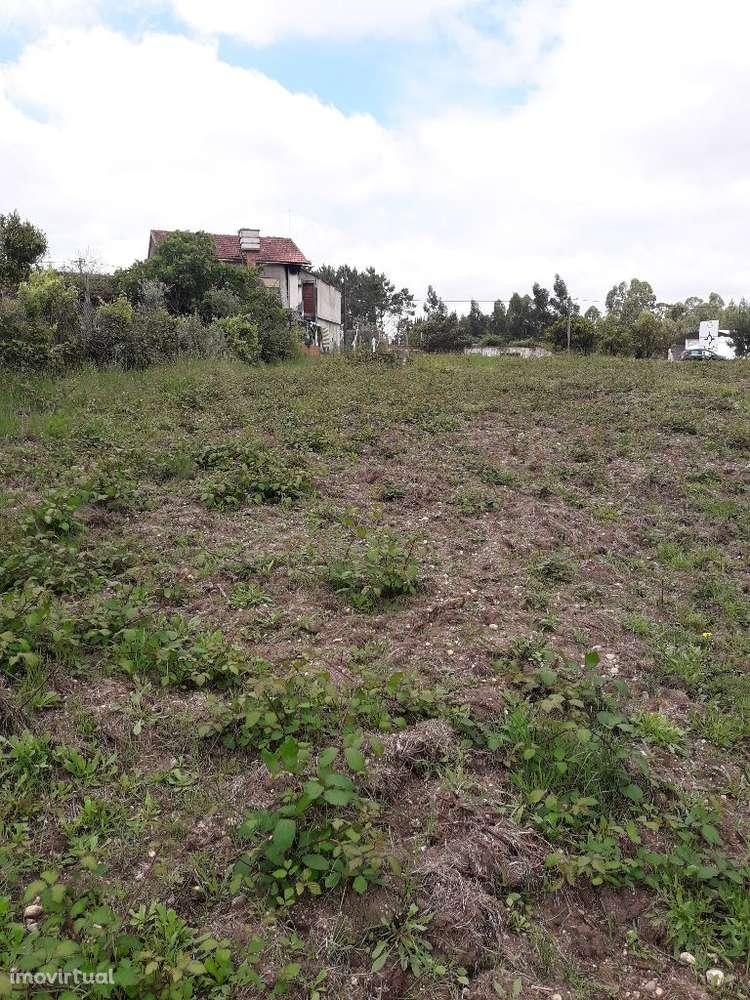 Terreno para comprar, Guia, Ilha e Mata Mourisca, Leiria - Foto 10