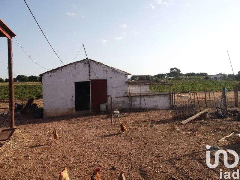 Terreno para comprar, Fronteira - Foto 12