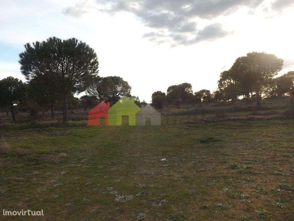 Quintas e herdades para comprar, Beja (Salvador e Santa Maria da Feira), Beja - Foto 13