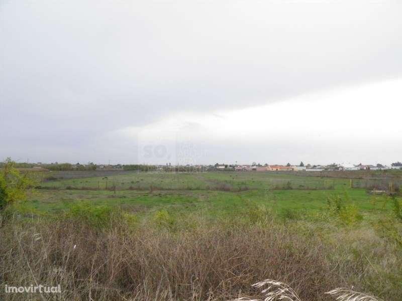 Quintas e herdades para comprar, Poceirão e Marateca, Setúbal - Foto 1