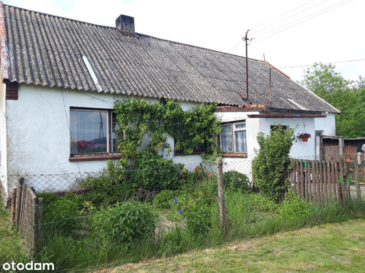 Dom w otoczeniu zieleni w Osieku Wielkim