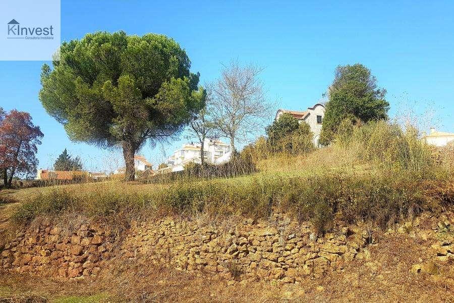 Quintas e herdades para comprar, Santo António dos Cavaleiros e Frielas, Lisboa - Foto 15