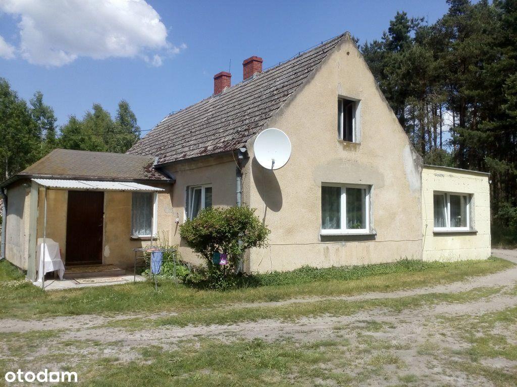 Dom, 120 m², Ostrówki