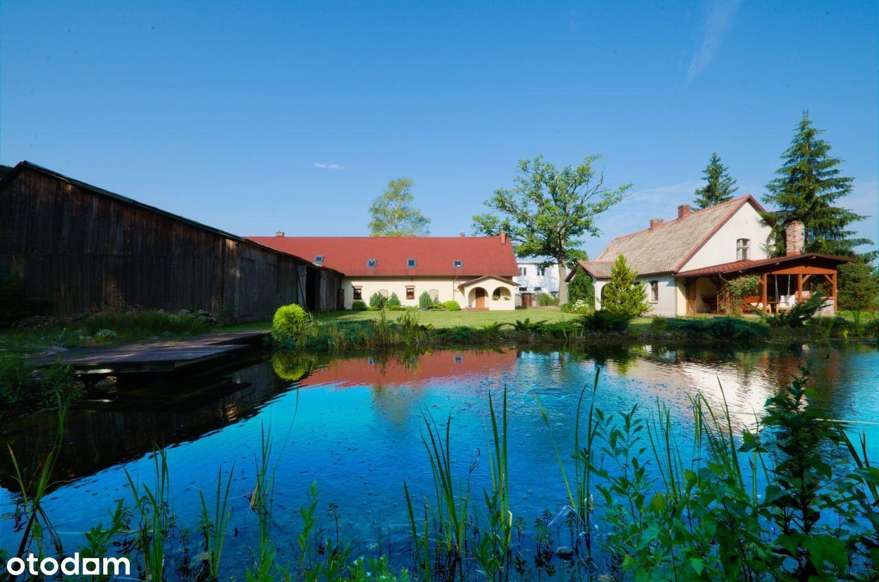 Dom w sercu borów tucholskich, staw, sauna, lasy