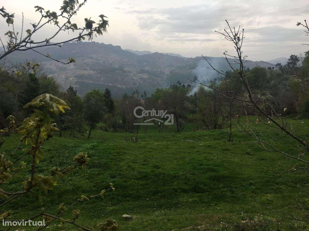 Quintas e herdades para comprar, Salamonde, Vieira do Minho, Braga - Foto 8