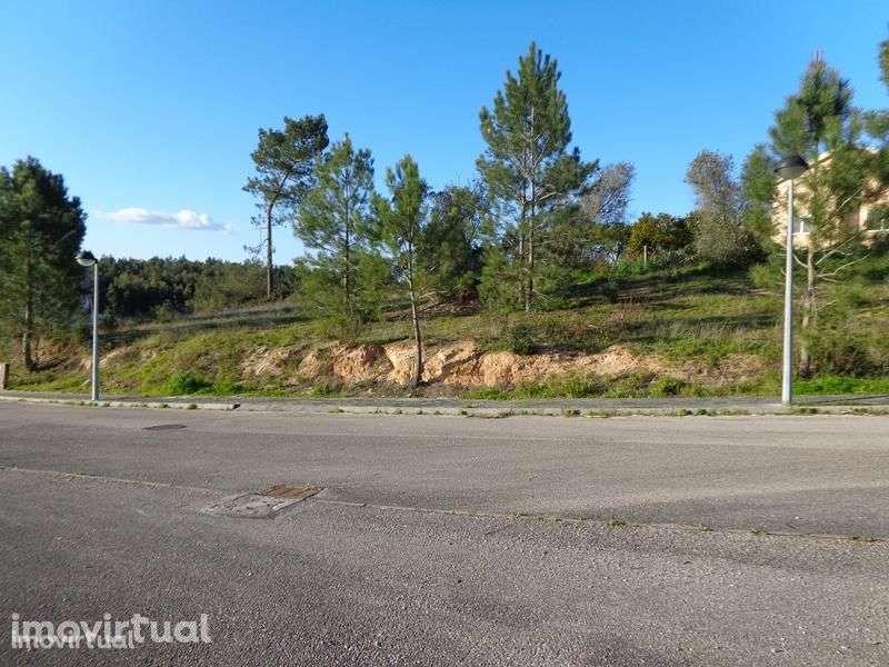 Terreno para comprar, Vale de Santarém, Santarém - Foto 3