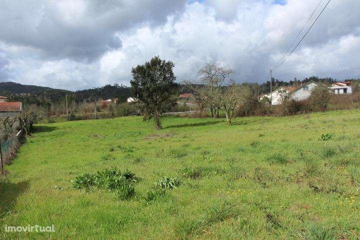 Terreno para comprar, Mortágua, Vale de Remígio, Cortegaça e Almaça, Viseu - Foto 3